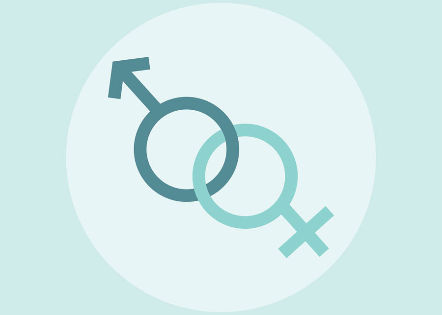 History of Gender and Sexuality