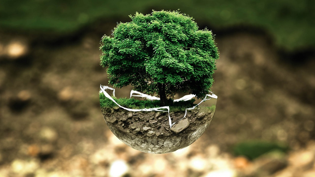 Global Sustainability: Living on a Finite Planet